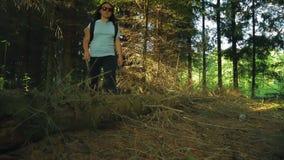 Una mujer en un bosque denso camina sobre un árbol caido metrajes