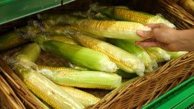 Una mujer en un supermercado en un estante vegetal, verduras de las compras y frutas El hombre elige la mazorca de maíz Cámara le almacen de video