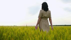 Una mujer en un vestido está en un campo de trigo, siguiendo el horizonte Las manos de las mujeres tocan suavemente los oídos del almacen de metraje de vídeo