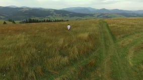 Una mujer está caminando a través del campo en la hierba alta en la montaña metrajes