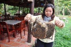 Una mujer está mostrando a sus apicultores la bandeja de su granja en la ciudad de Ben Tre Fotos de archivo libres de regalías