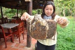 Una mujer está mostrando a sus apicultores la bandeja de su granja en la ciudad de Ben Tre Fotografía de archivo libre de regalías