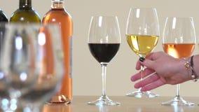 Una mujer está sosteniendo un vidrio de vino, turistas está probando el concepto del vino almacen de metraje de vídeo