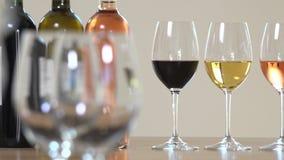 Una mujer está sosteniendo un vidrio de vino, turistas está probando el concepto del vino metrajes