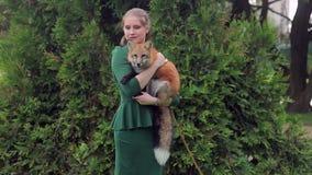 Una mujer está sosteniendo un zorro rojo en el fondo de un árbol en el verano almacen de metraje de vídeo