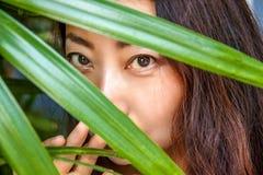Una mujer hermosa está ocultando detrás de hojas de palma Cuidado del este de la belleza y de piel foto de archivo libre de regalías