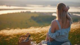 Una mujer hermosa que se sienta en el campo metrajes