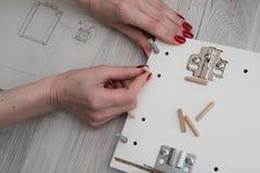 Una mujer inserta los pernos de madera en el flanco de los muebles w Imagen de archivo libre de regalías