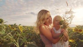 Una mujer joven con un pequeño niño se está colocando en el medio de un campo grande de girasoles Época hermosa de la puesta del  metrajes