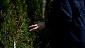 Una mujer joven elige las flores para el jardín almacen de metraje de vídeo