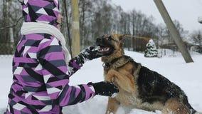 Una mujer joven en una chaqueta del invierno que frota ligeramente el hocico del ` s del perro almacen de video