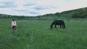 Una mujer joven está caminando a lo largo del campo al lado de un caballo blanco y negro Muchacha hermosa en un campo con un caba almacen de video