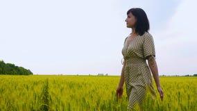 Una mujer joven está entre los oídos verdes del trigo en el campo Mujer despreocupada hermosa que disfruta de la naturaleza y de  metrajes