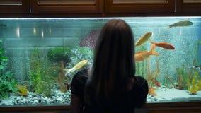 Una mujer joven mira la natación de los pescados en un acuario grande con curiosidad metrajes