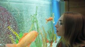 Una mujer joven mira la natación de los pescados en un acuario grande con curiosidad almacen de video
