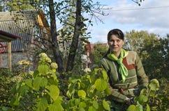 Una mujer joven que cuida para las flores. imagen de archivo libre de regalías