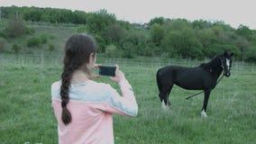 Una mujer joven saca en un smartphone un caballo atado a un pasto en el campo Muchacha hermosa en los lanzamientos del campo almacen de metraje de vídeo