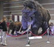 Una mujer mira en una familia del mamut lanoso Foto de archivo