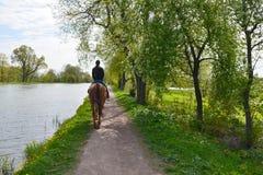 Una mujer morena joven en vaqueros y sudadera con capucha azul monta un caballo de bahía a lo largo de una trayectoria por el lag fotos de archivo
