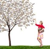 Una mujer que alcanza encima del dinero de la cosecha de un árbol Foto de archivo libre de regalías