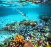 Una mujer que bucea en el arrecife de coral hermoso con las porciones de pescados Fotografía de archivo libre de regalías