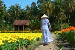 Una mujer que camina en el camino rural en Can Tho, Vietnam Imagen de archivo libre de regalías