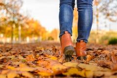 Una mujer que camina en la estación del otoño Fotografía de archivo libre de regalías