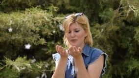 Una mujer rubia que sopla una pelusa del álamo Pelusa del álamo en las manos de una muchacha almacen de video
