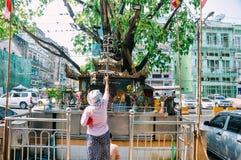 Una mujer ruega en un templo de la calle en Rangún imagen de archivo libre de regalías