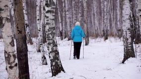 Una mujer se ocupa de caminar nórdico en el bosque del abedul almacen de metraje de vídeo