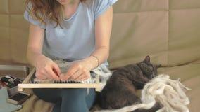Una mujer teje en un telar un bordado hermoso hecho del hilado, en un estudio casero, el gato está cerca almacen de metraje de vídeo