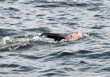 Una natación femenina del triathlete Fotos de archivo