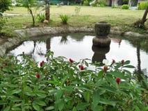 una naturaleza en Asia Foto de archivo libre de regalías