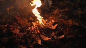 Una nave de papel quema en el fuego Las quemaduras del fuego en el follaje del otoño almacen de video