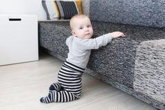una neonata da 6 mesi che prova a alzarsi Immagini Stock