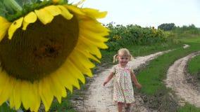 Una niña corre a lo largo de una carretera nacional a través de un campo con un girasol almacen de video