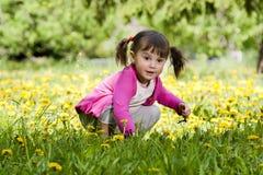 Una niña en el campo del diente de león Imagen de archivo libre de regalías