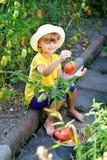 Una niña pequeña, linda en un sombrero cosecha una cosecha madura del ri foto de archivo