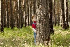 Una niña que mira furtivamente de detrás los árboles Fotografía de archivo