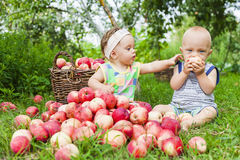 Una niña y un muchacho con una cesta de manzanas rojas fotografía de archivo libre de regalías