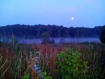 Una niebla de la tarde Fotos de archivo libres de regalías