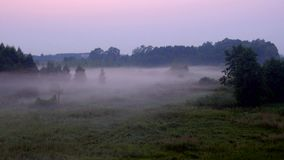 Una niebla hermosa cubre la tierra en crepúsculo almacen de metraje de vídeo