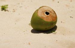 Una noce di cocco abbandonata sulla spiaggia Fotografia Stock