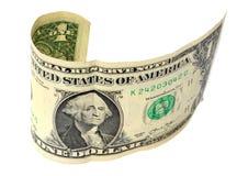 Una nota del dollaro Immagine Stock