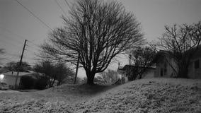 Una notte nevosa Fotografie Stock