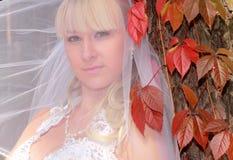 Una novia adorable sobre el árbol del otoño Foto de archivo libre de regalías