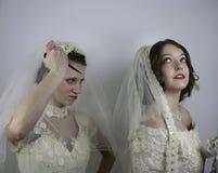 Una novia alrededor para rasgar el velo de otra novia Imagen de archivo libre de regalías