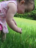 Una nueva experiencia de los childs en la hierba foto de archivo
