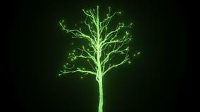 Una nueva vida bajo la forma de árbol creciente de descargas eléctricas En 4K ultra HD ilustración del vector