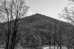 Una opinión blanco y negro del invierno de la montaña superior aguda imágenes de archivo libres de regalías